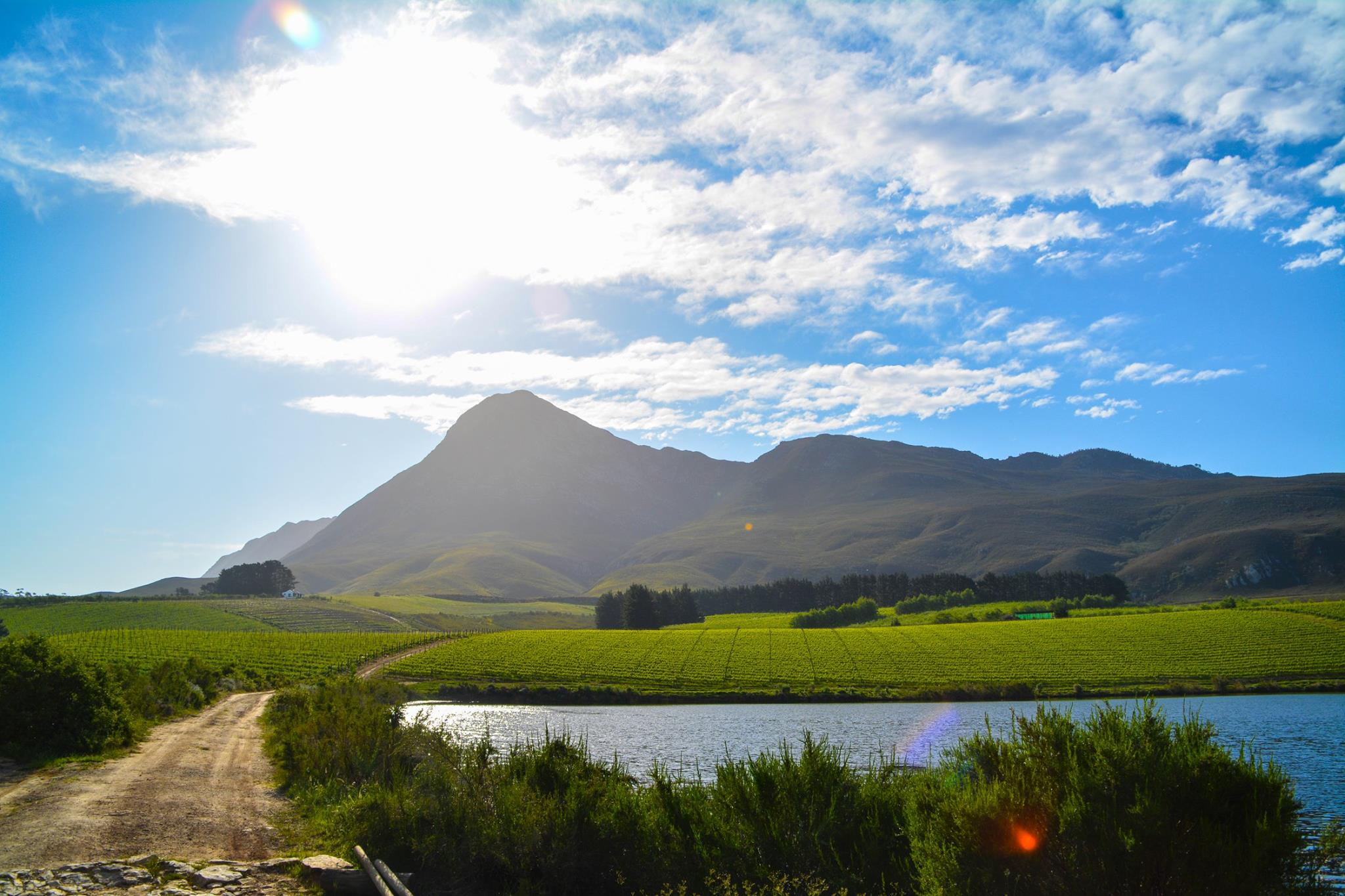 6 Breathtaking Experiences You Must Have Just Outside Of Cape Town, South Africa (27)