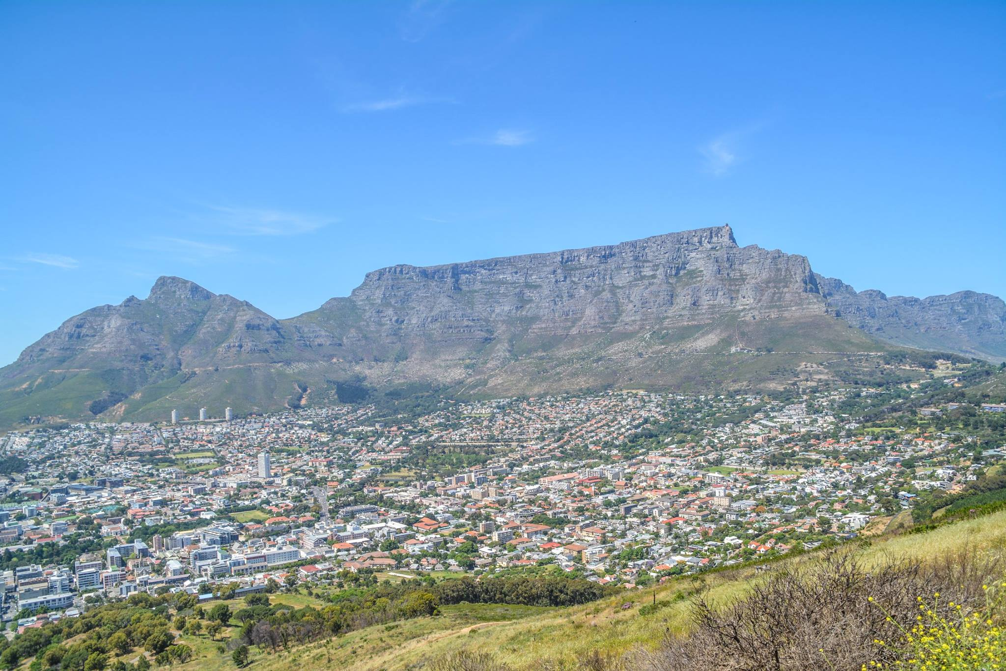 6 Breathtaking Experiences You Must Have Just Outside Of Cape Town, South Africa (24)
