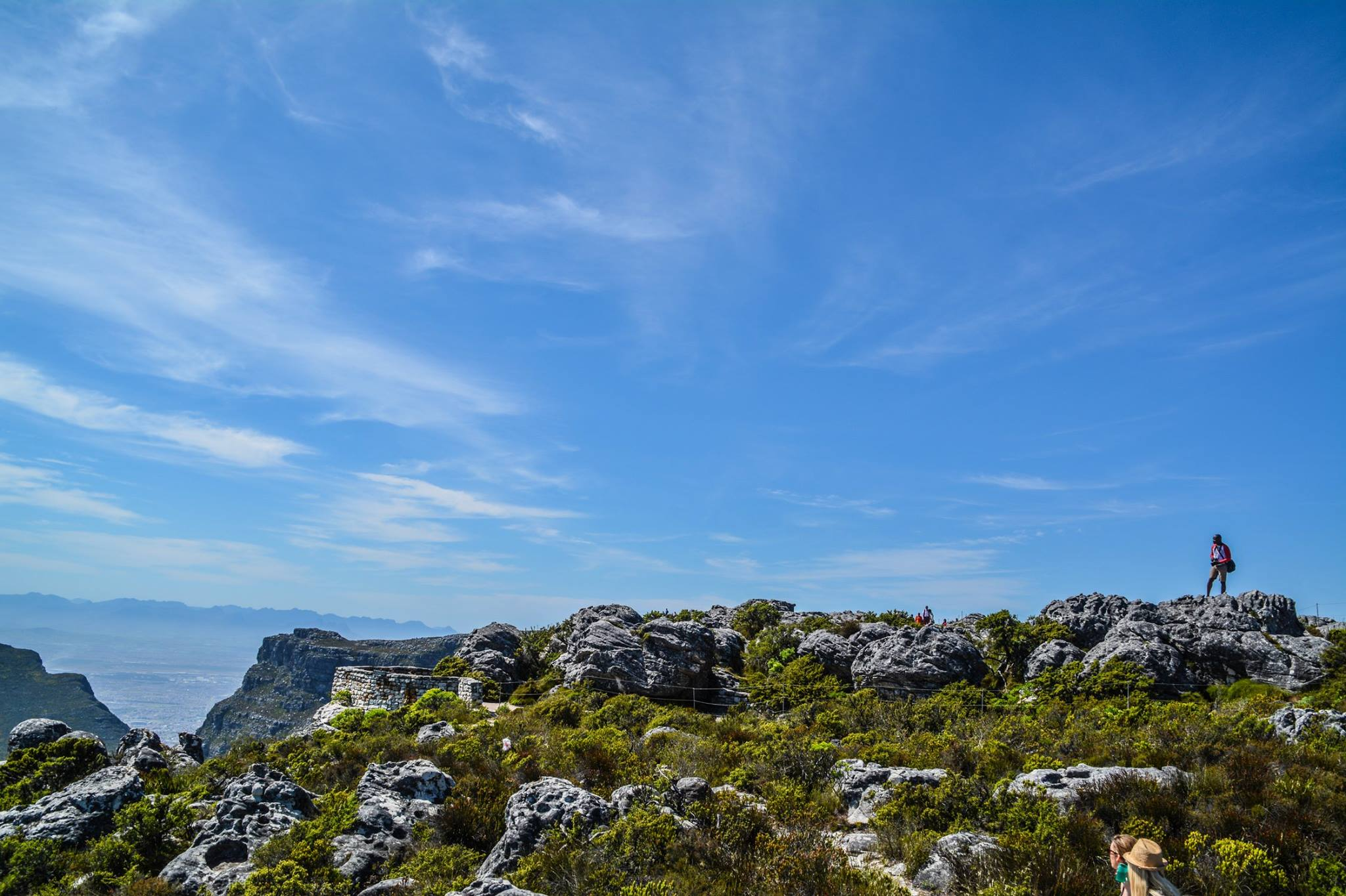 6 Breathtaking Experiences You Must Have Just Outside Of Cape Town, South Africa (23)