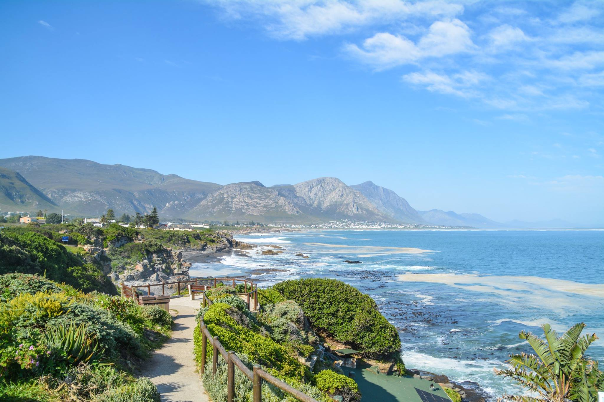 6 Breathtaking Experiences You Must Have Just Outside Of Cape Town, South Africa (26)