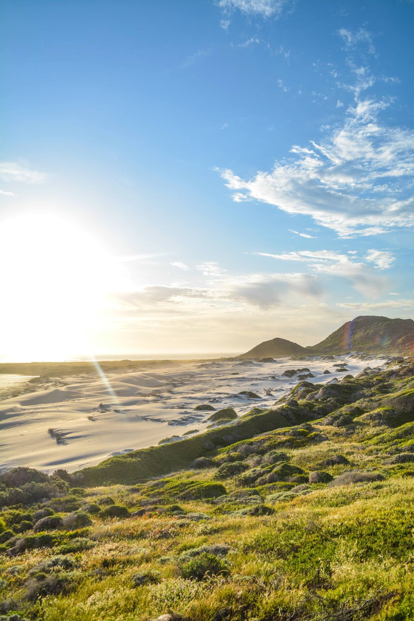 6 Breathtaking Experiences You Must Have Just Outside Of Cape Town, South Africa (18)