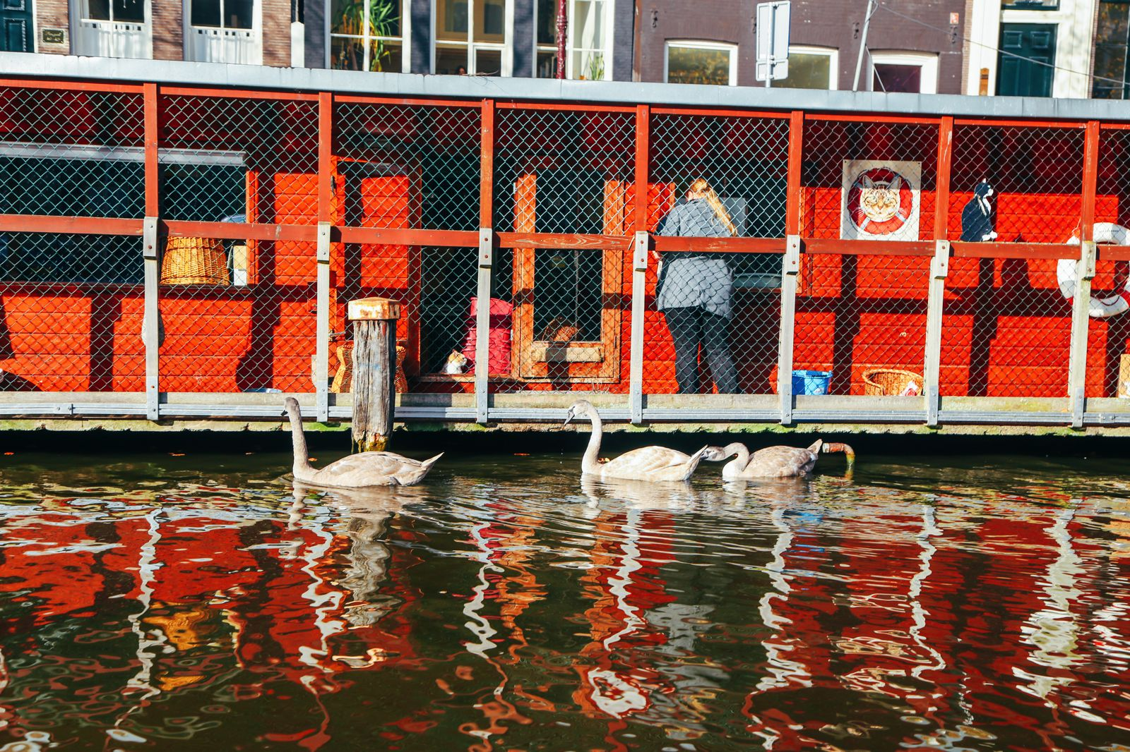 Exploring Amsterdam's Canal (By Driving A Boat For The First Time!) (3)