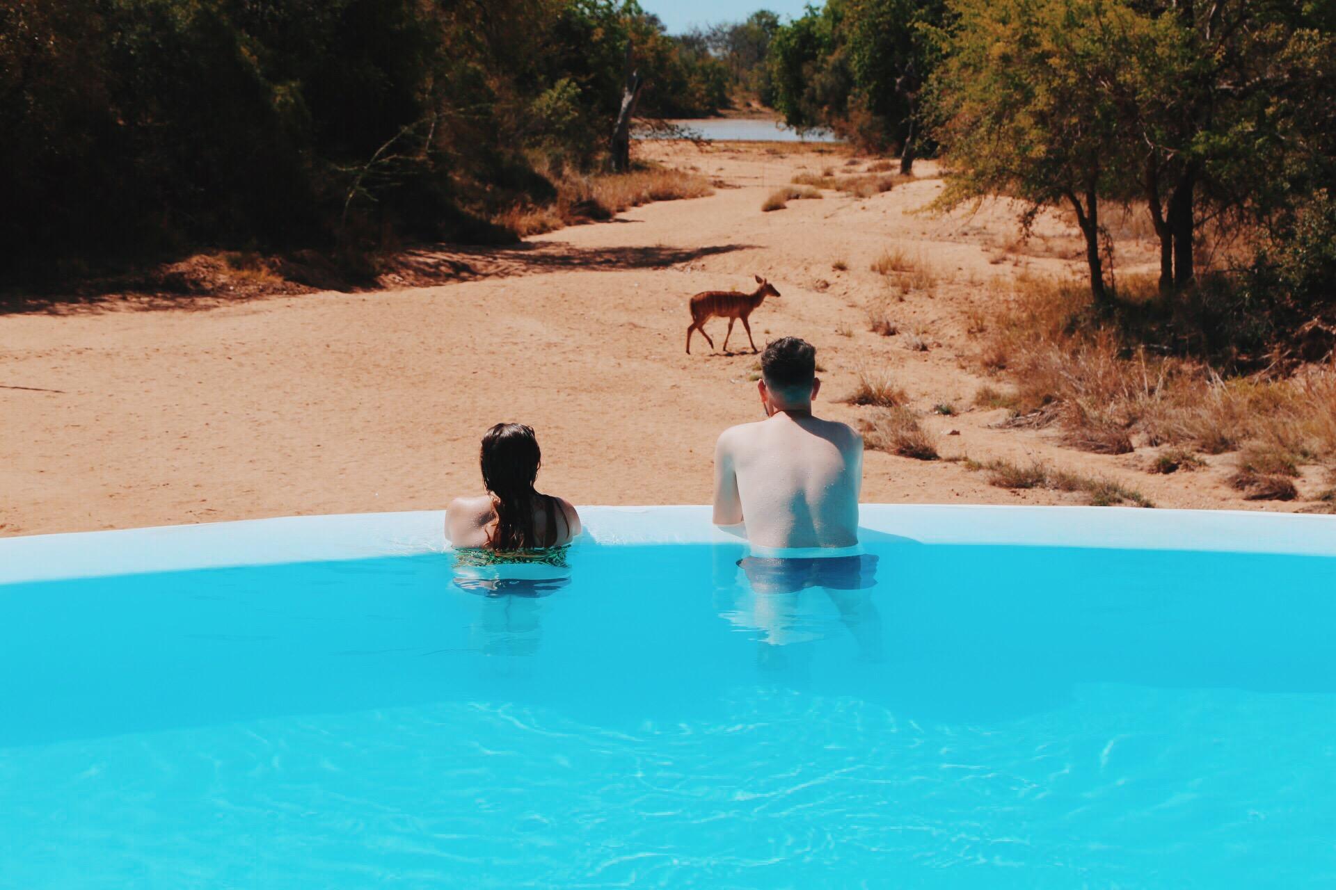 Safari In South Africa - A Photo Diary (4)
