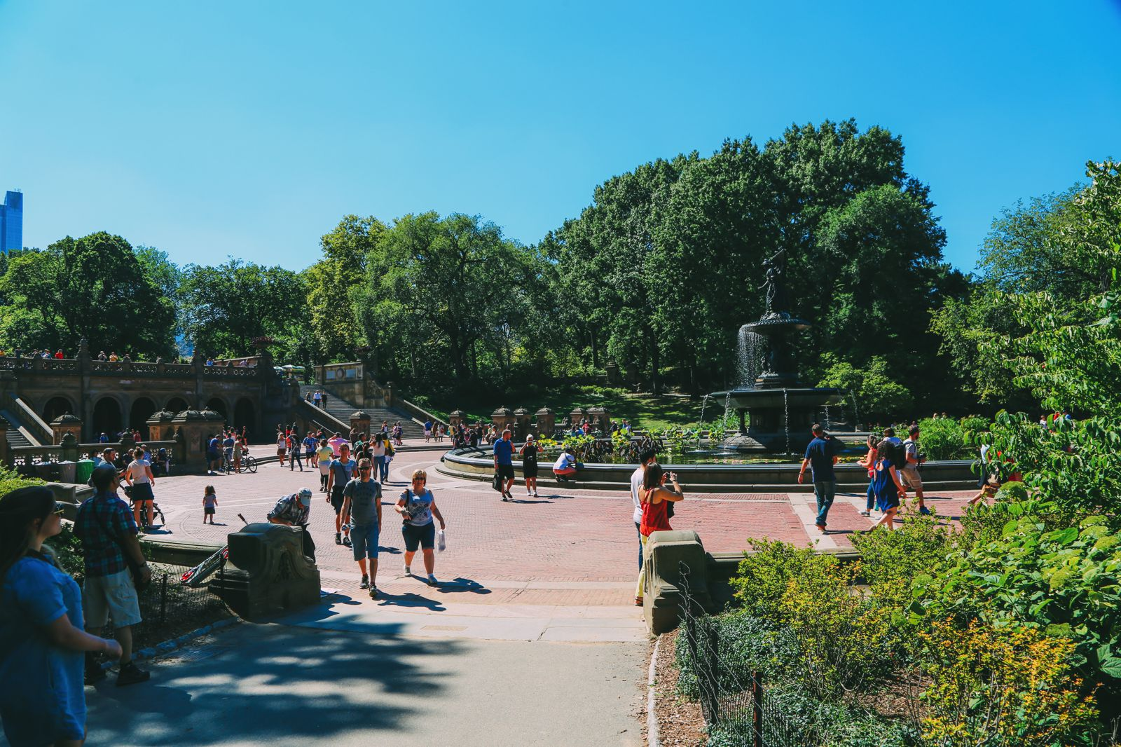 Central Park - A New York Photo Diary (8)