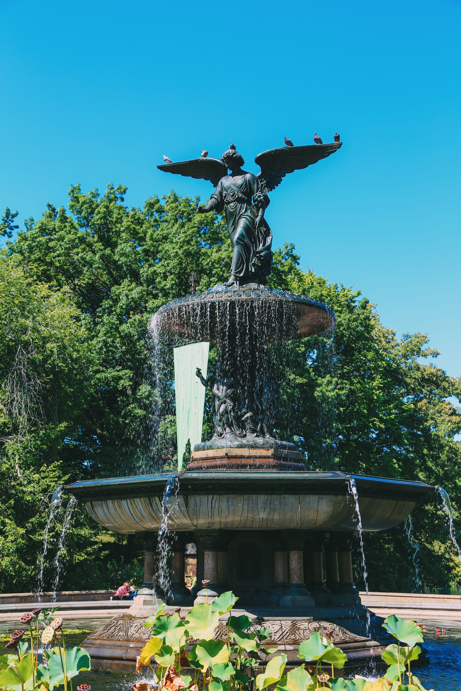 Central Park - A New York Photo Diary (9)