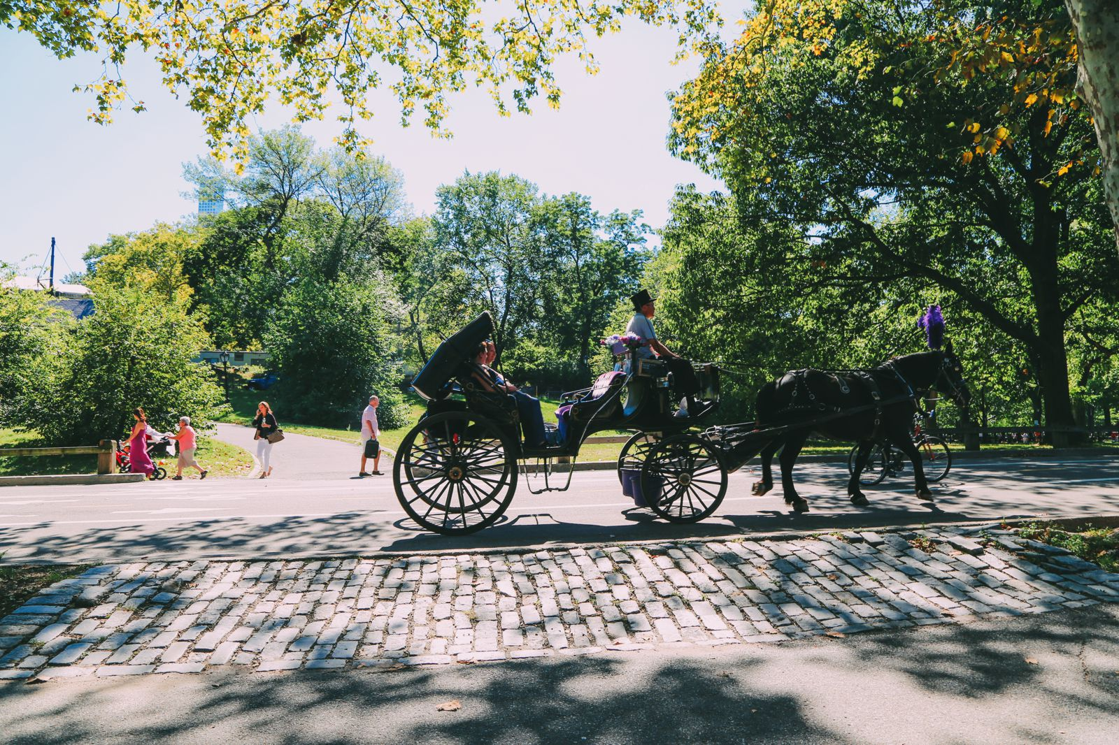 Central Park - A New York Photo Diary (25)
