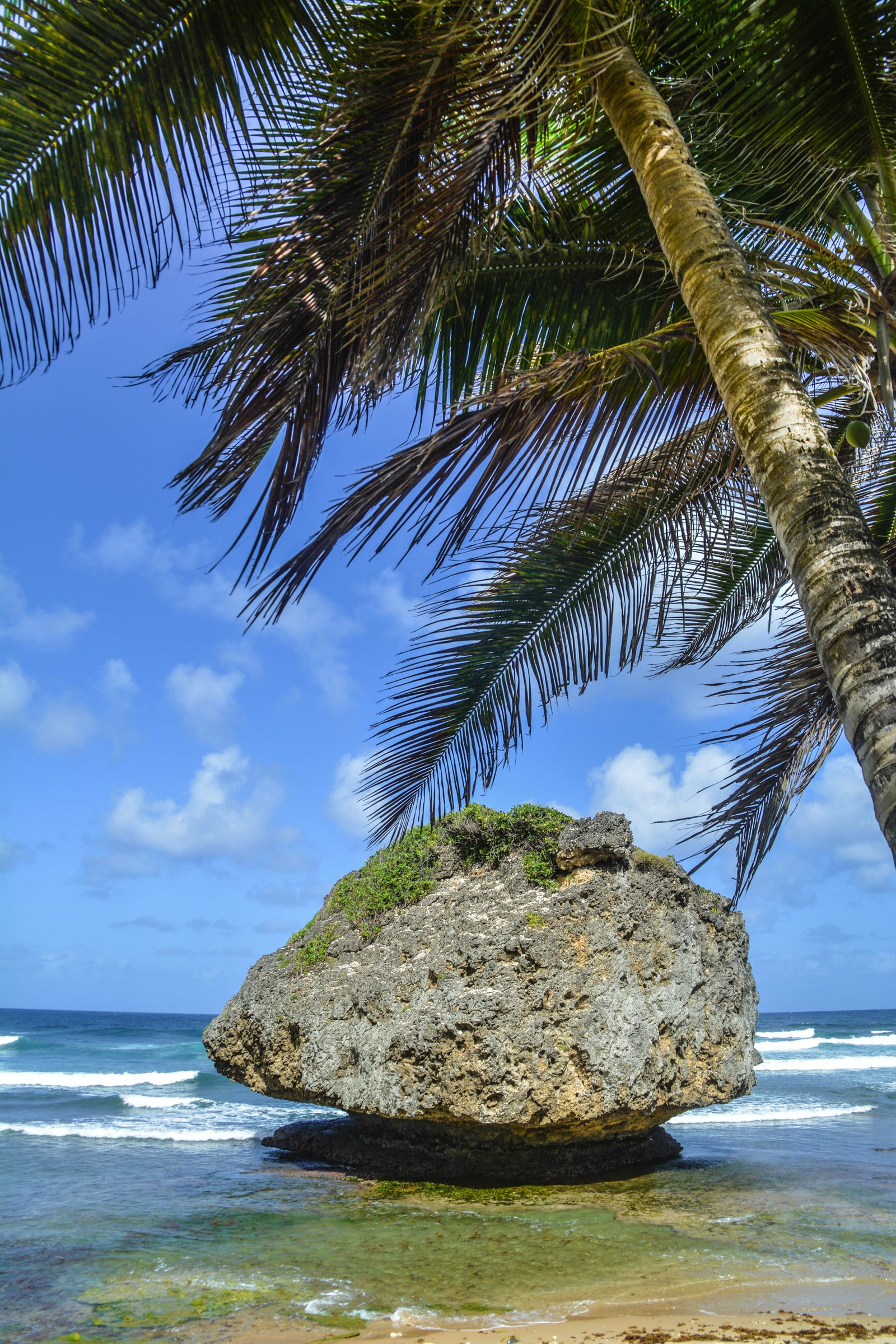 Exploring The Unspoilt Beauty of East Barbados (9)