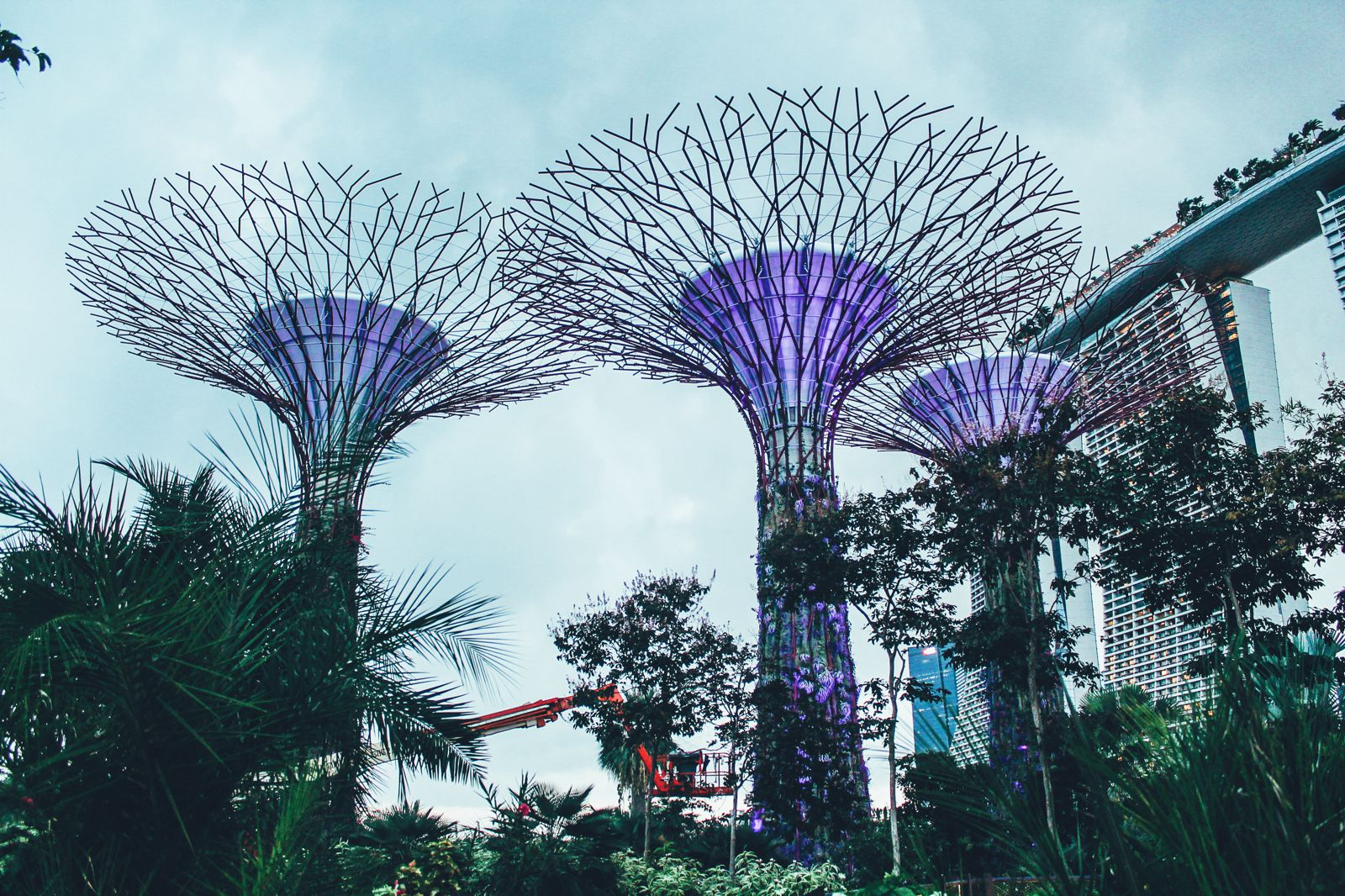 12 Places You Need To Experience In Singapore (43)