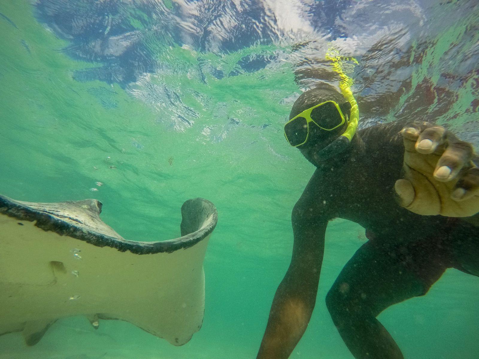 How To Swim With Wild Stingrays In Antigua (38)