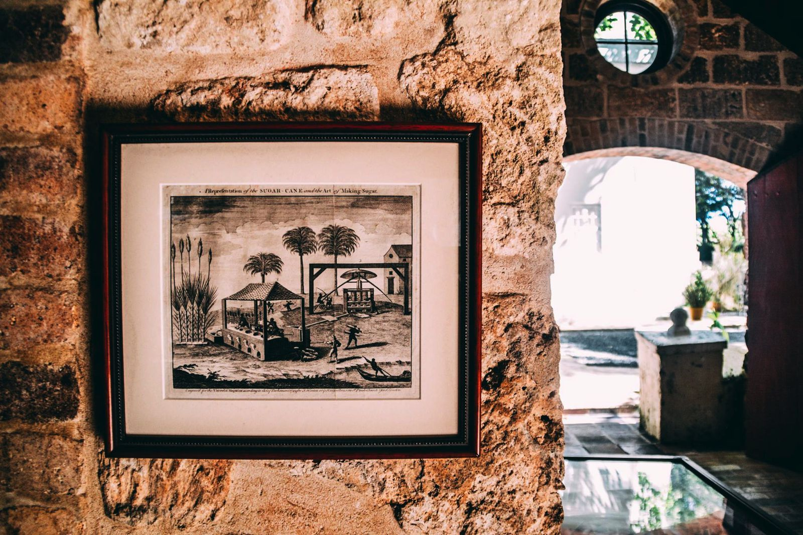 Exploring The Picturesque St. Nicholas Abbey In Barbados (11)