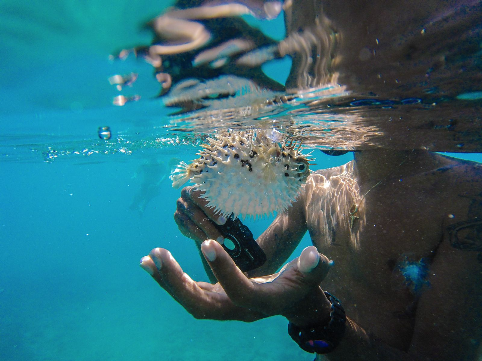 11 Reasons Why You Should Visit Barbados This Year (13)