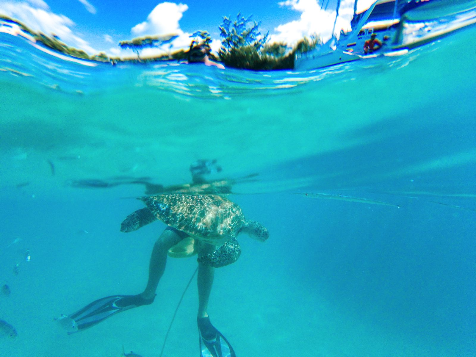 11 Reasons Why You Should Visit Barbados This Year (14)
