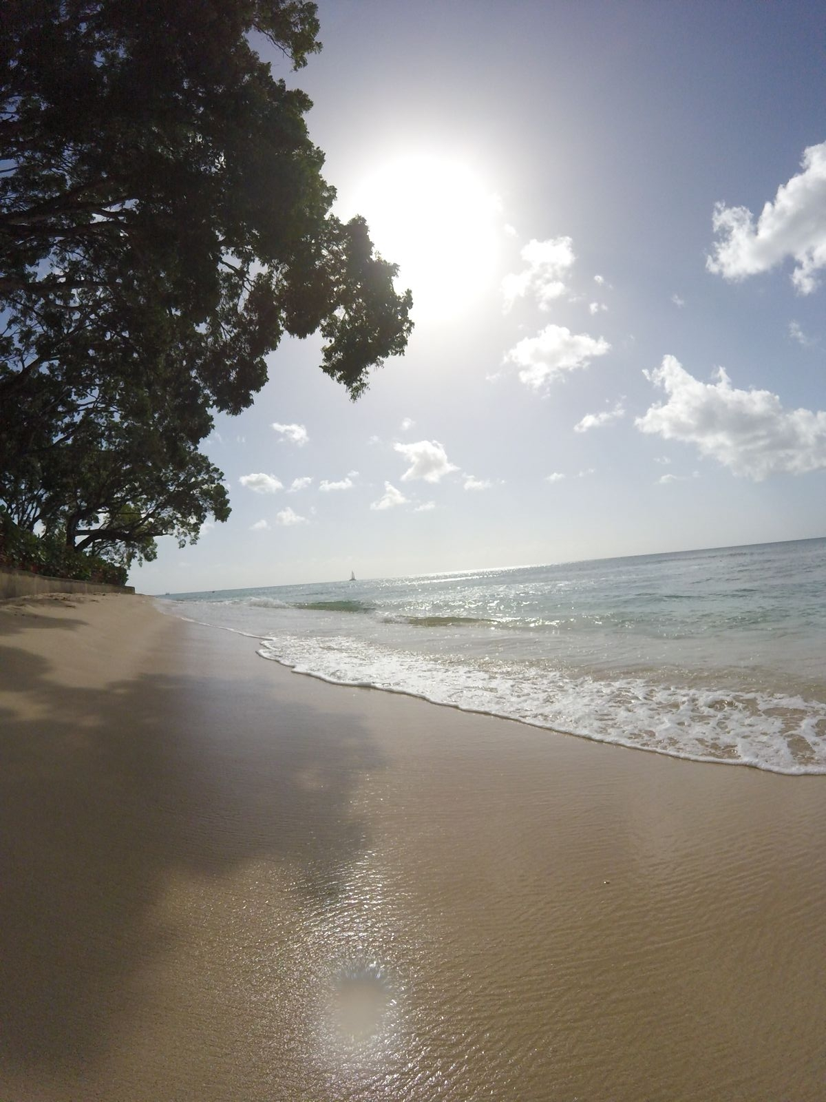 11 Reasons Why You Should Visit Barbados This Year (19)