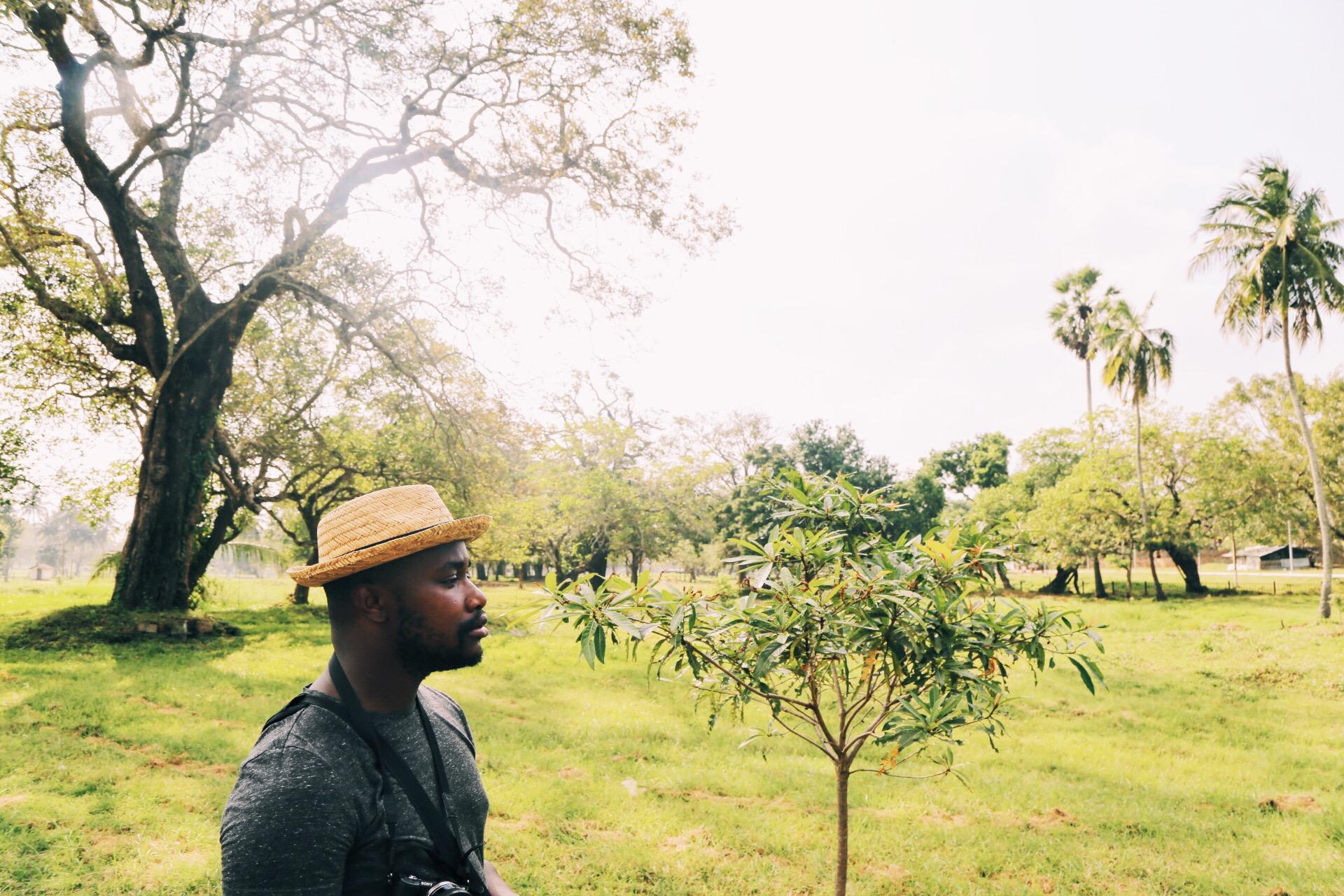 Scenes from Sri Lanka (1)