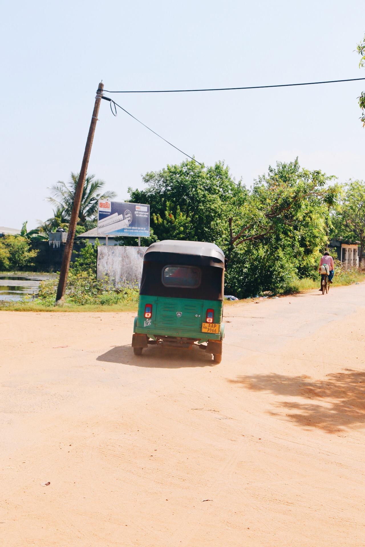 Scenes from Sri Lanka (14)