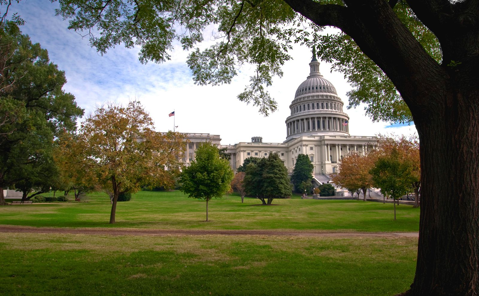 10 First Time Things You have To Do In Washington, D.C. (12)
