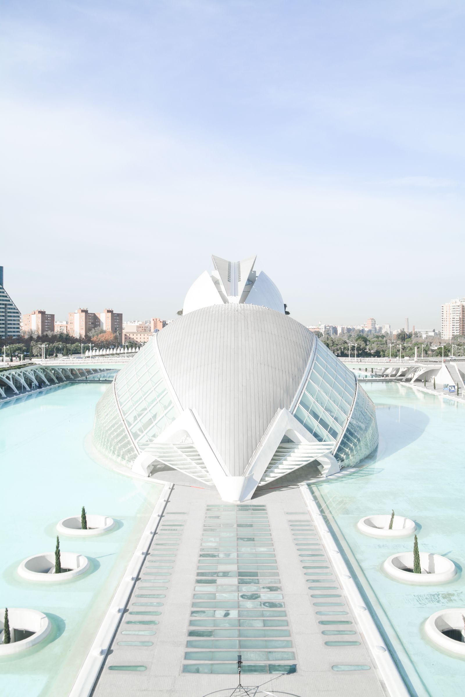 Spend A Day Exploring The Beauty Of Valencia (4)