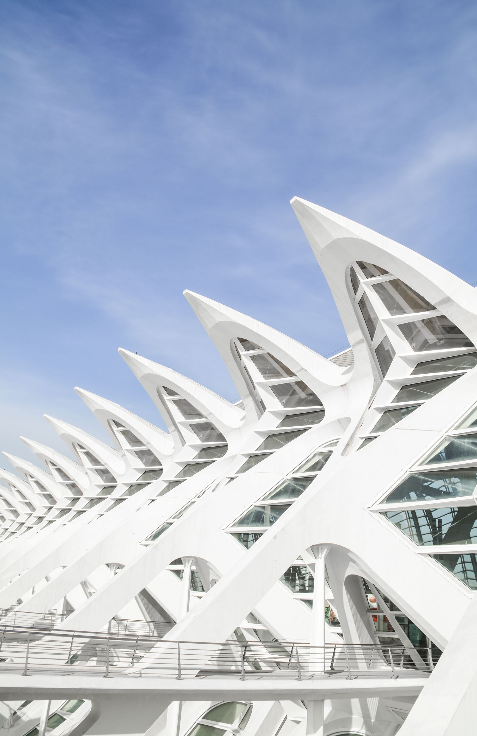 Spend A Day Exploring The Beauty Of Valencia (5)