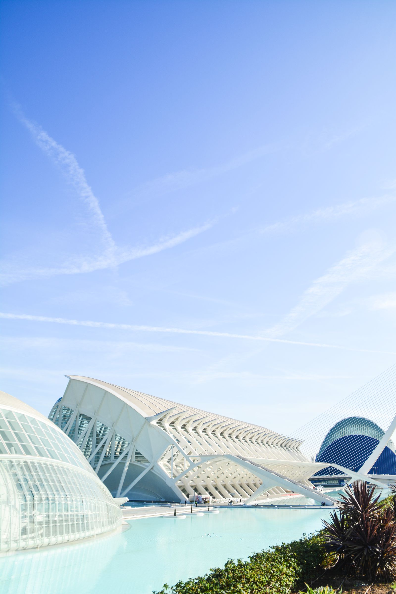 Spend A Day Exploring The Beauty Of Valencia (20)