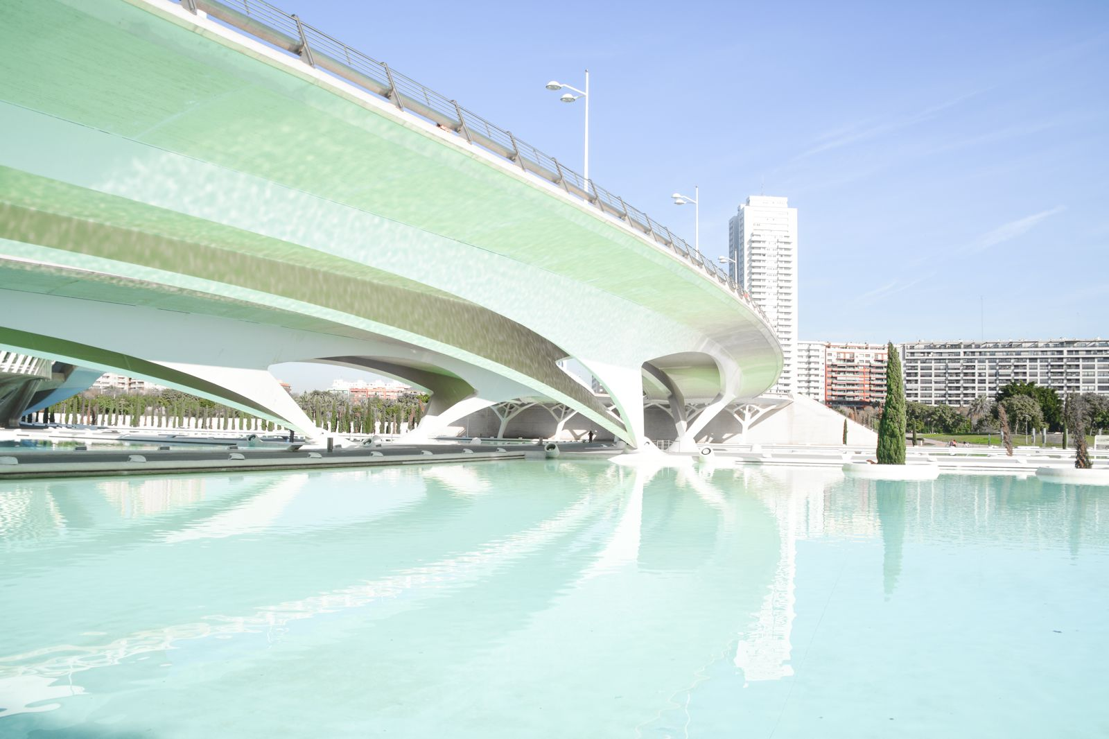 Spend A Day Exploring The Beauty Of Valencia (23)