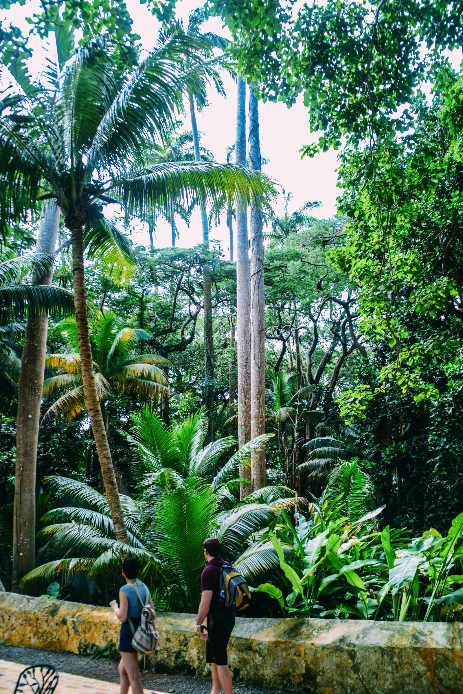 11 Reasons Why You Should Visit Barbados This Year (28)