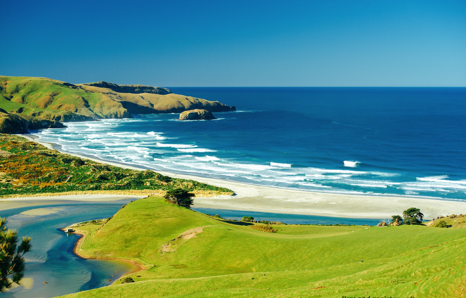 10 Beaches You Have To Visit In New Zealand (4)