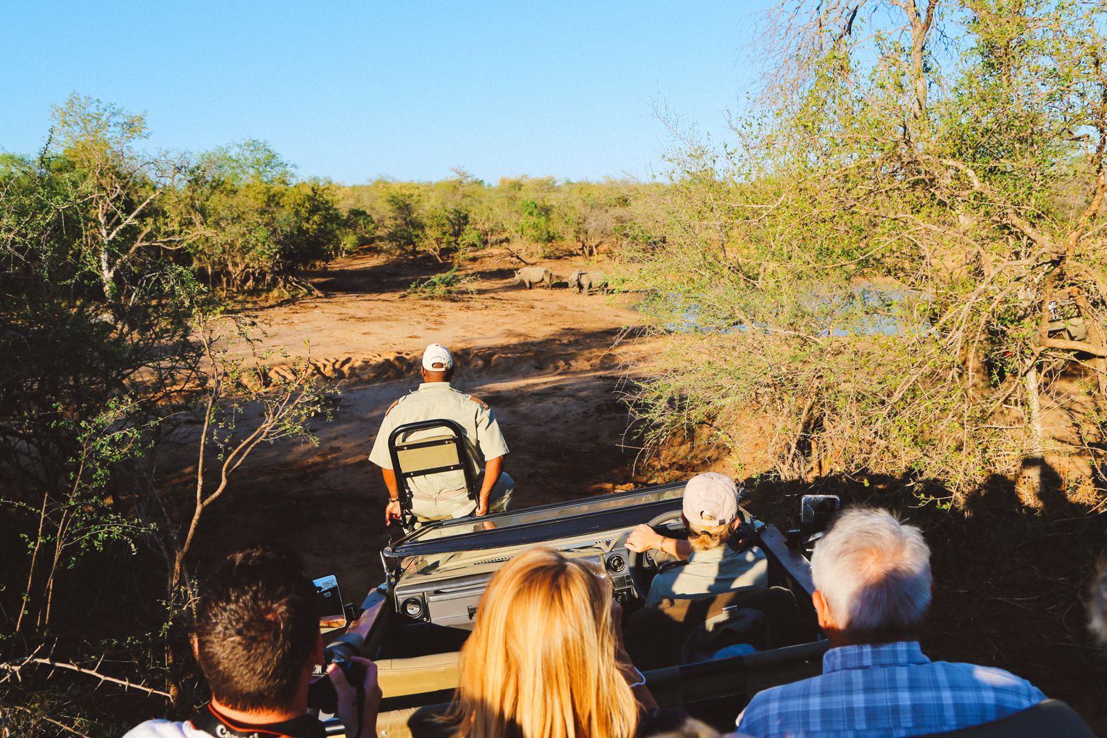 Midnight Lions, Skittish Giraffes And The Deadliest Of The Safari Big 5 In South Africa (47)