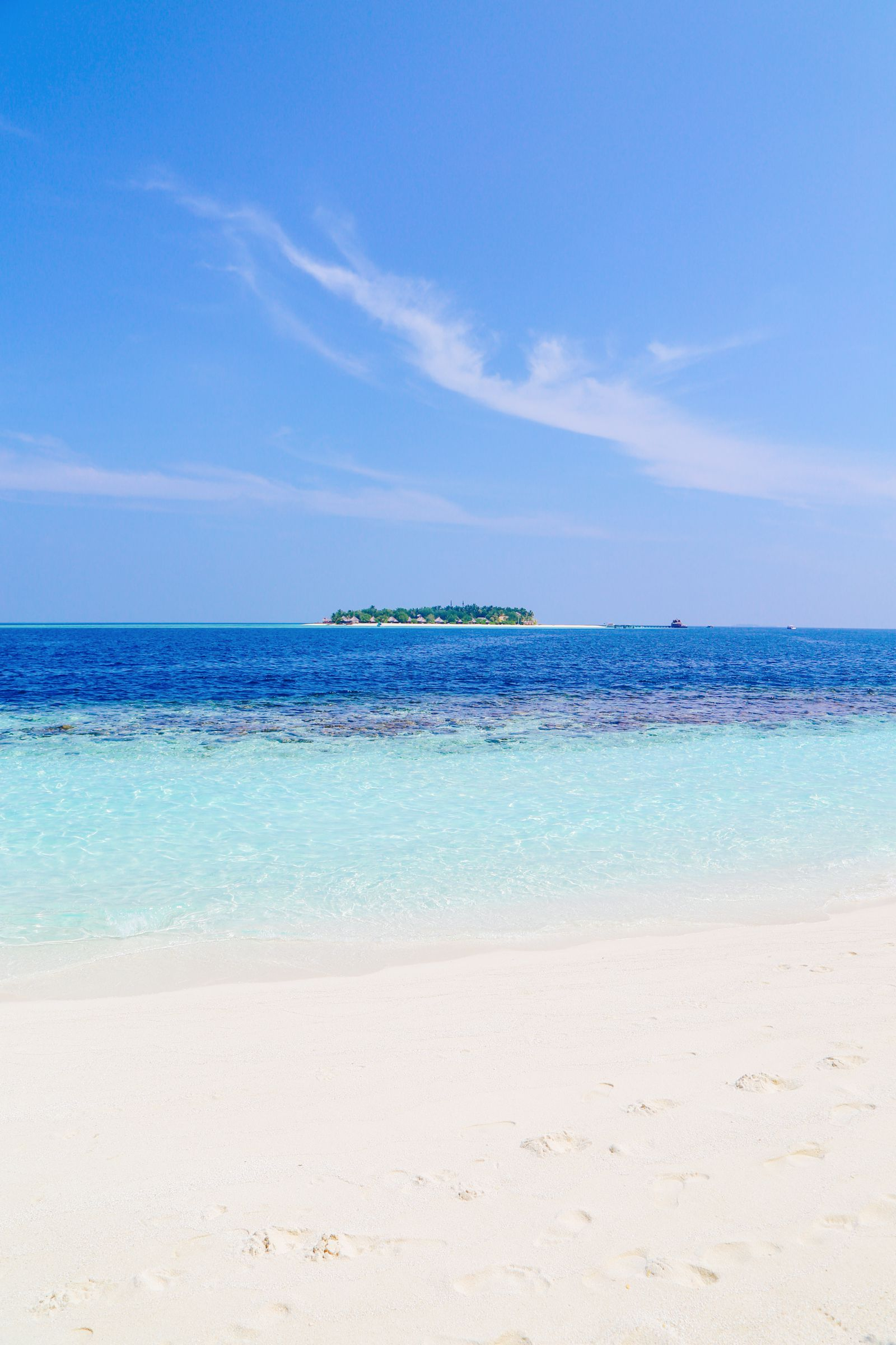 Swimming With Sharks, Turtles, Clownfish And Stingrays In The Maldives (1)