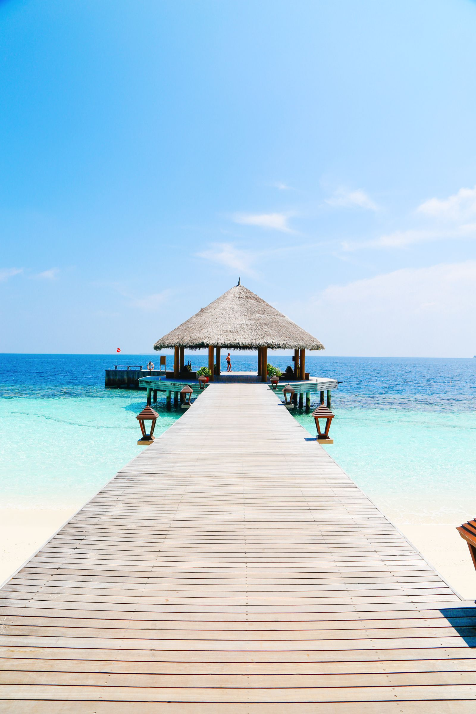 Swimming With Sharks, Turtles, Clownfish And Stingrays In The Maldives (35)