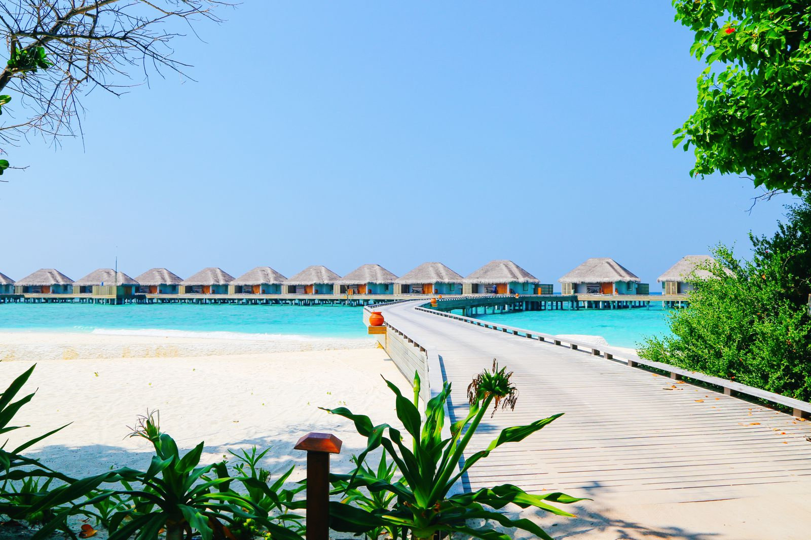 Arrival At The Dusit Thani In The Maldives! (13)