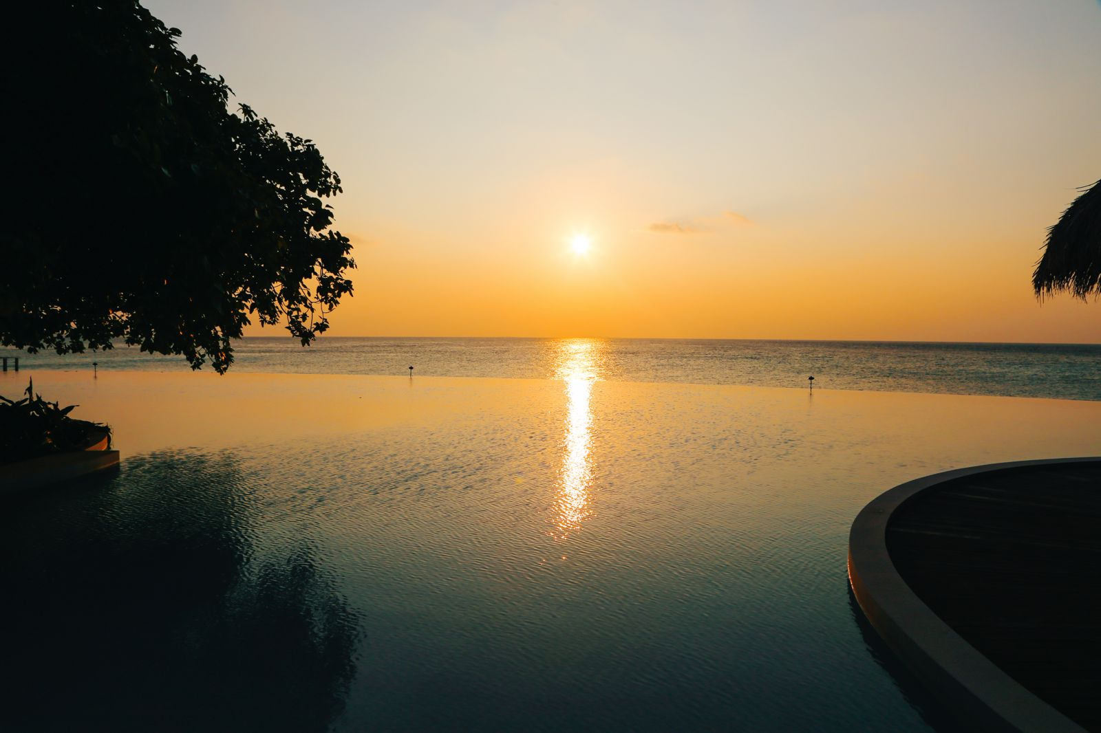 Arrival At The Dusit Thani In The Maldives! (56)