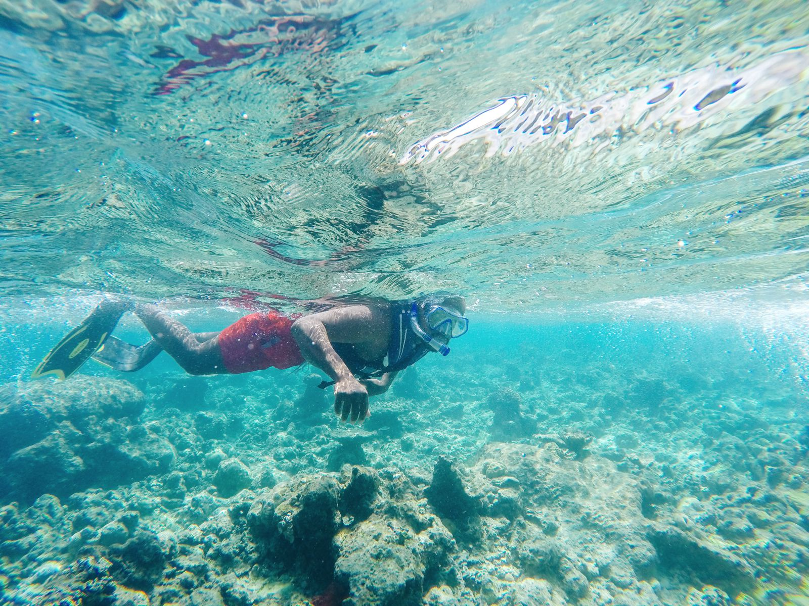 Reef Explorers In The Maldives (17)