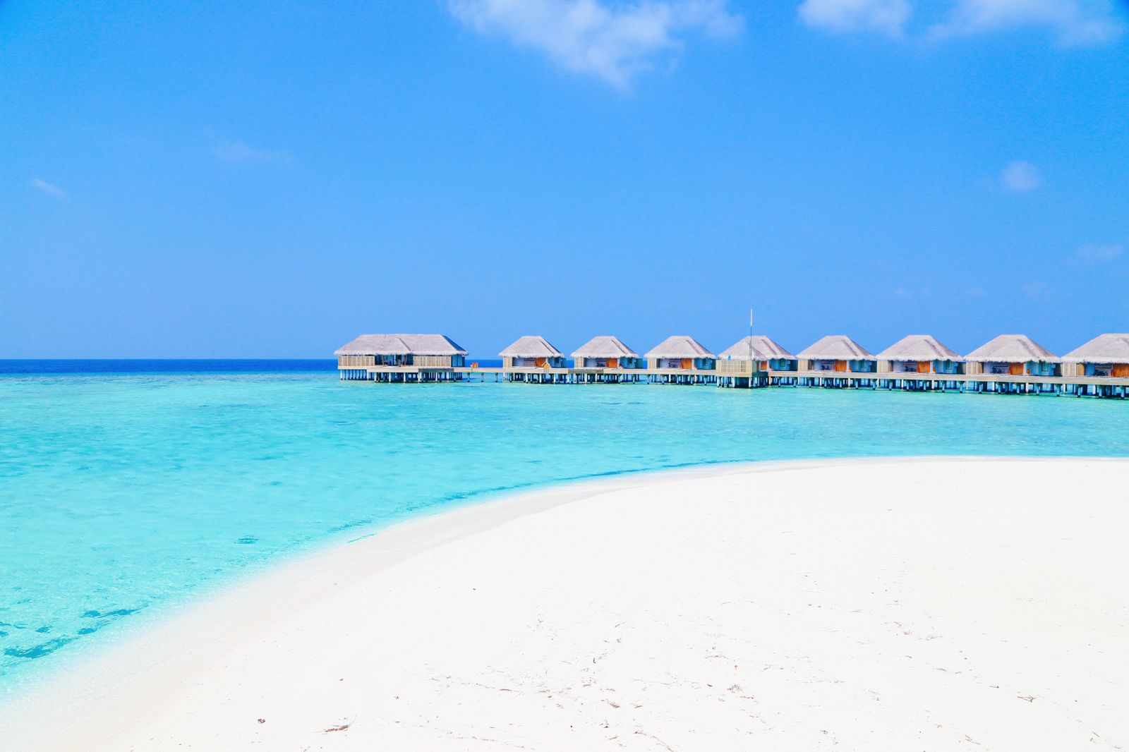 Reef Explorers In The Maldives (36)