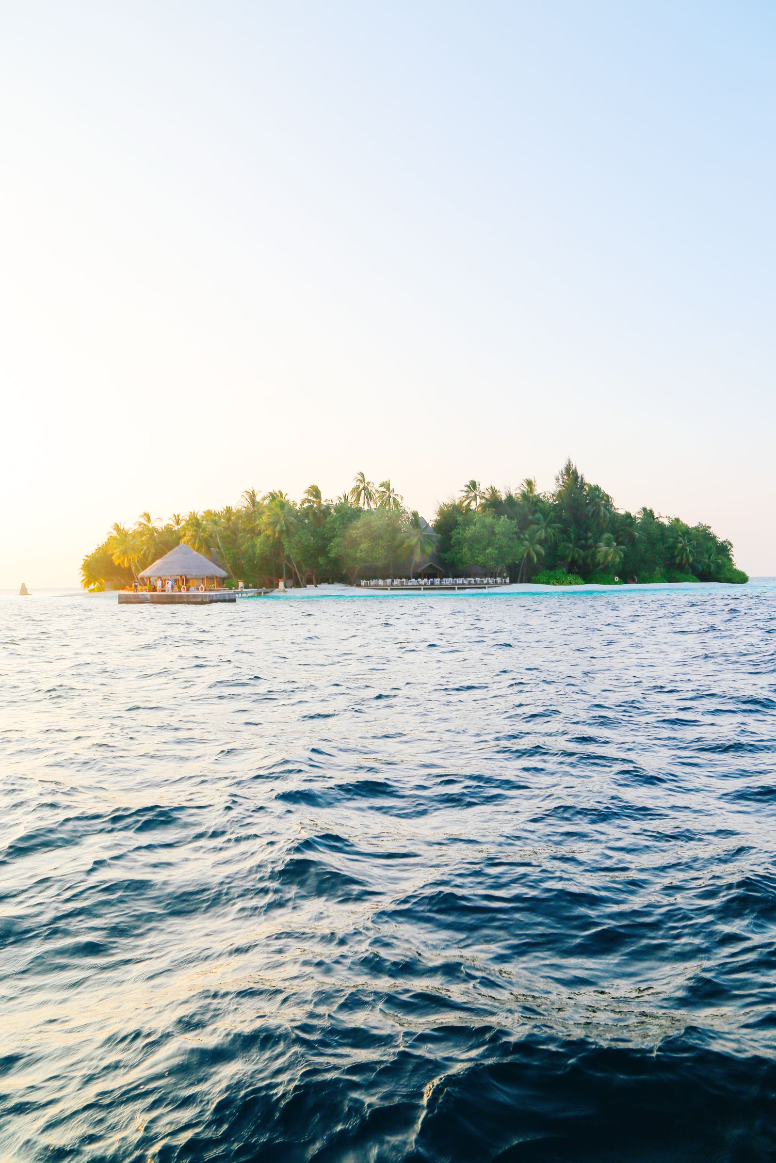 Reef Explorers In The Maldives (51)