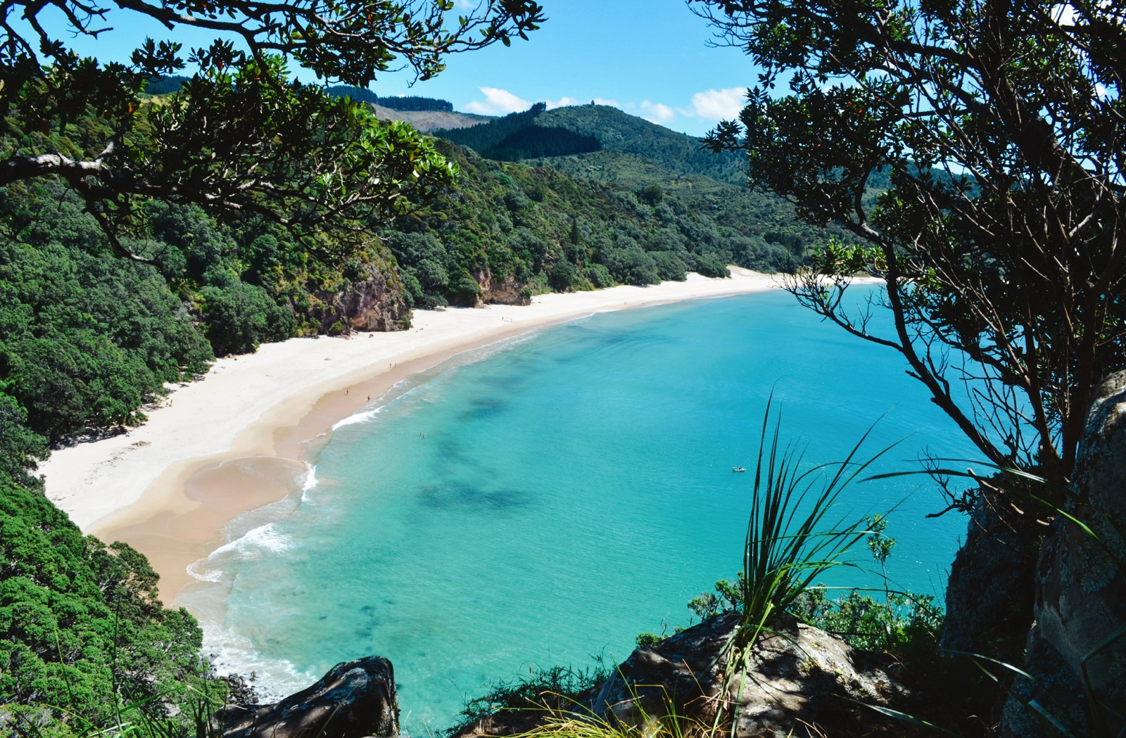 10 Beaches You Have To Visit In New Zealand (12)