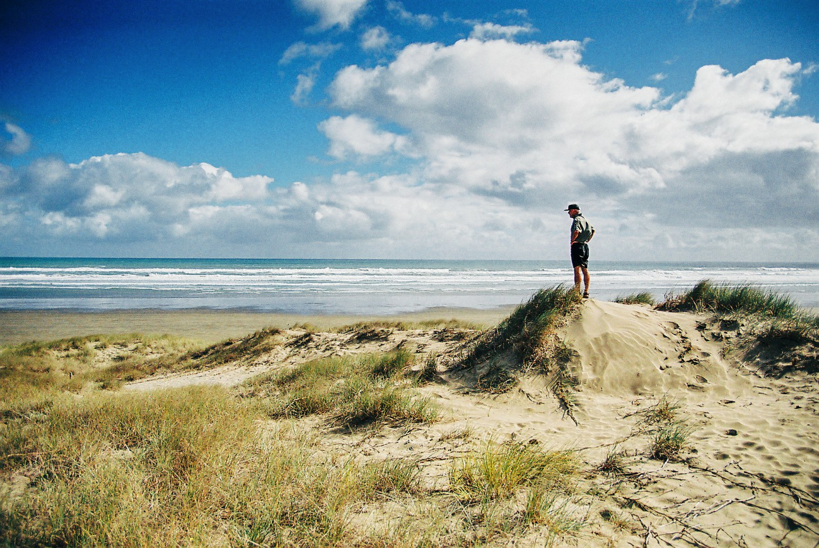 10 Beaches You Have To Visit In New Zealand (14)