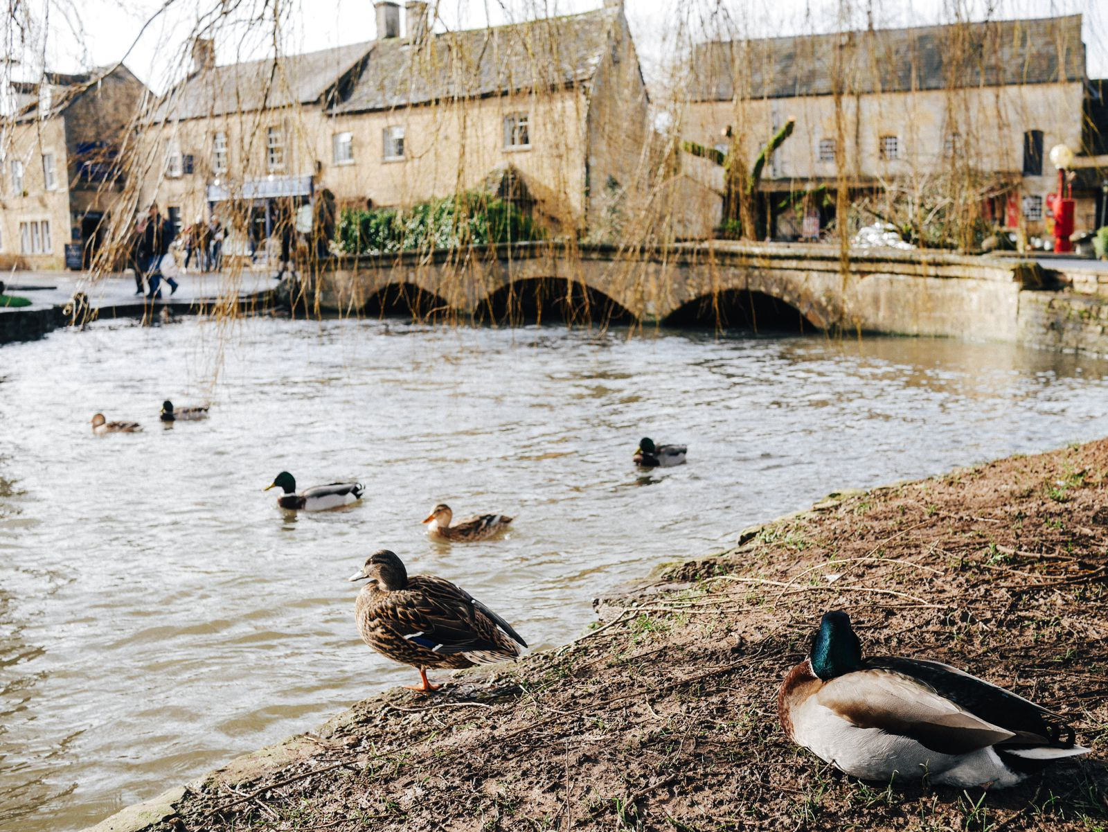 How To Plan The Perfect Weekend In The Picturesque Cotswolds, England (26)