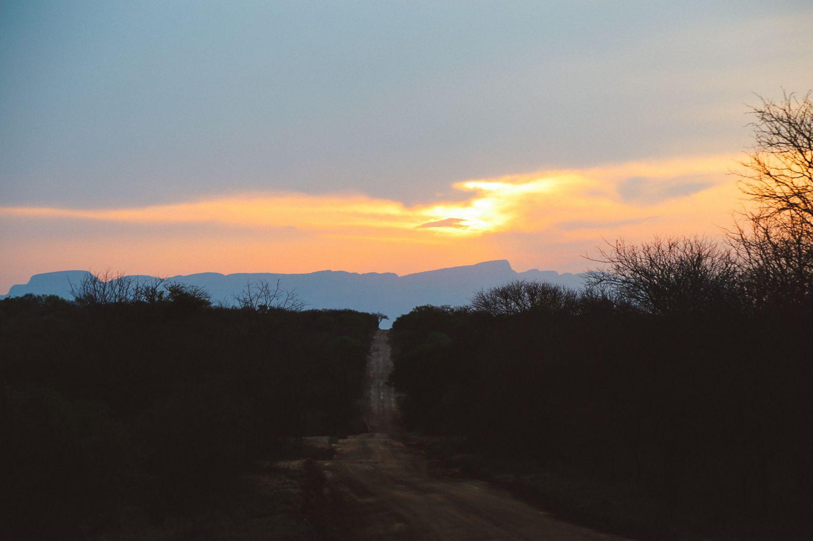 Jungle Love, South Africa (10)