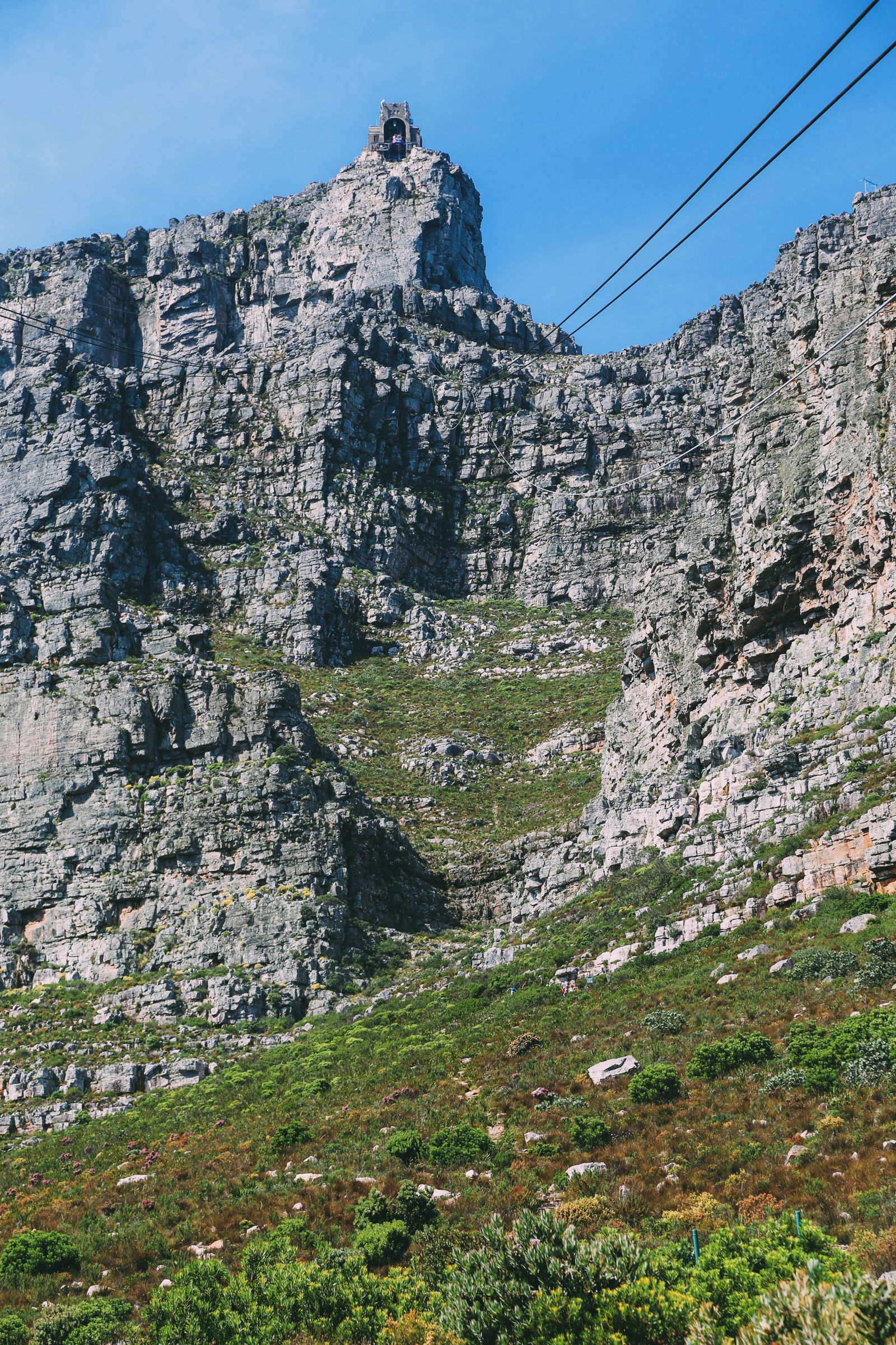 Journey Up Table Mountain In Cape Town, South Africa (12)