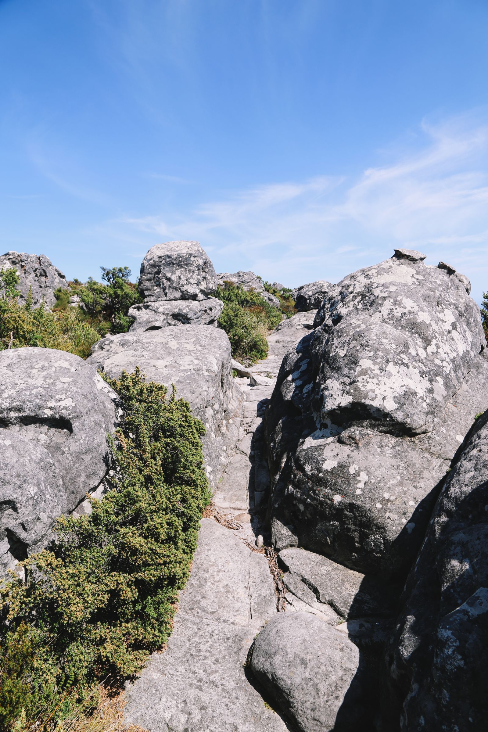 Journey Up Table Mountain In Cape Town, South Africa (28)