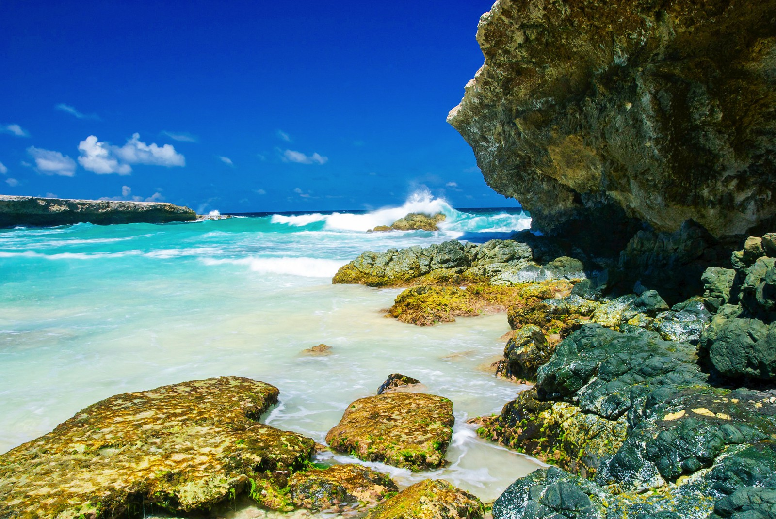 8 Fun Experiences You Need To Have In The Caribbean Island Of Aruba (8)