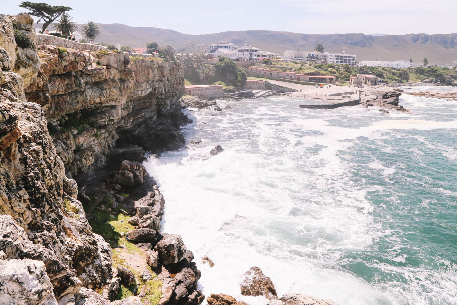 This Is The Best Place To Go Whale Watching In South Africa... And It Has Wine! (12)