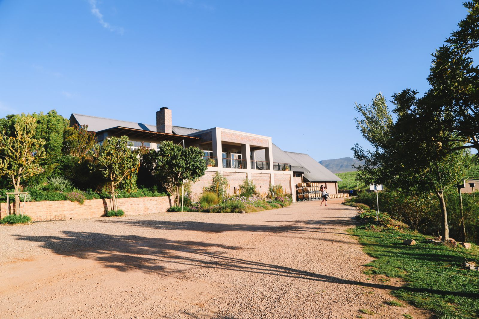 This Is The Best Place To Go Whale Watching In South Africa... And It Has Wine! (40)