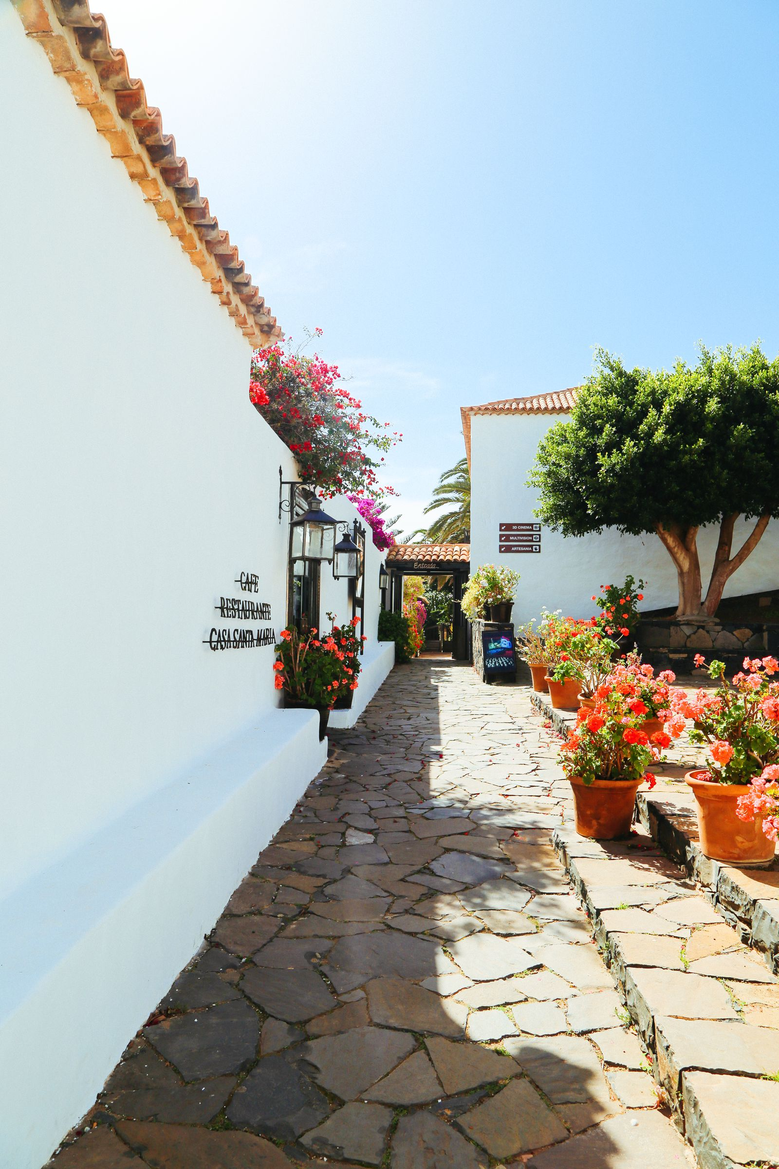 Here's Why You Should Visit The Tiny Town Of Betancuria In, Fuerteventura In The Canary Islands (14)