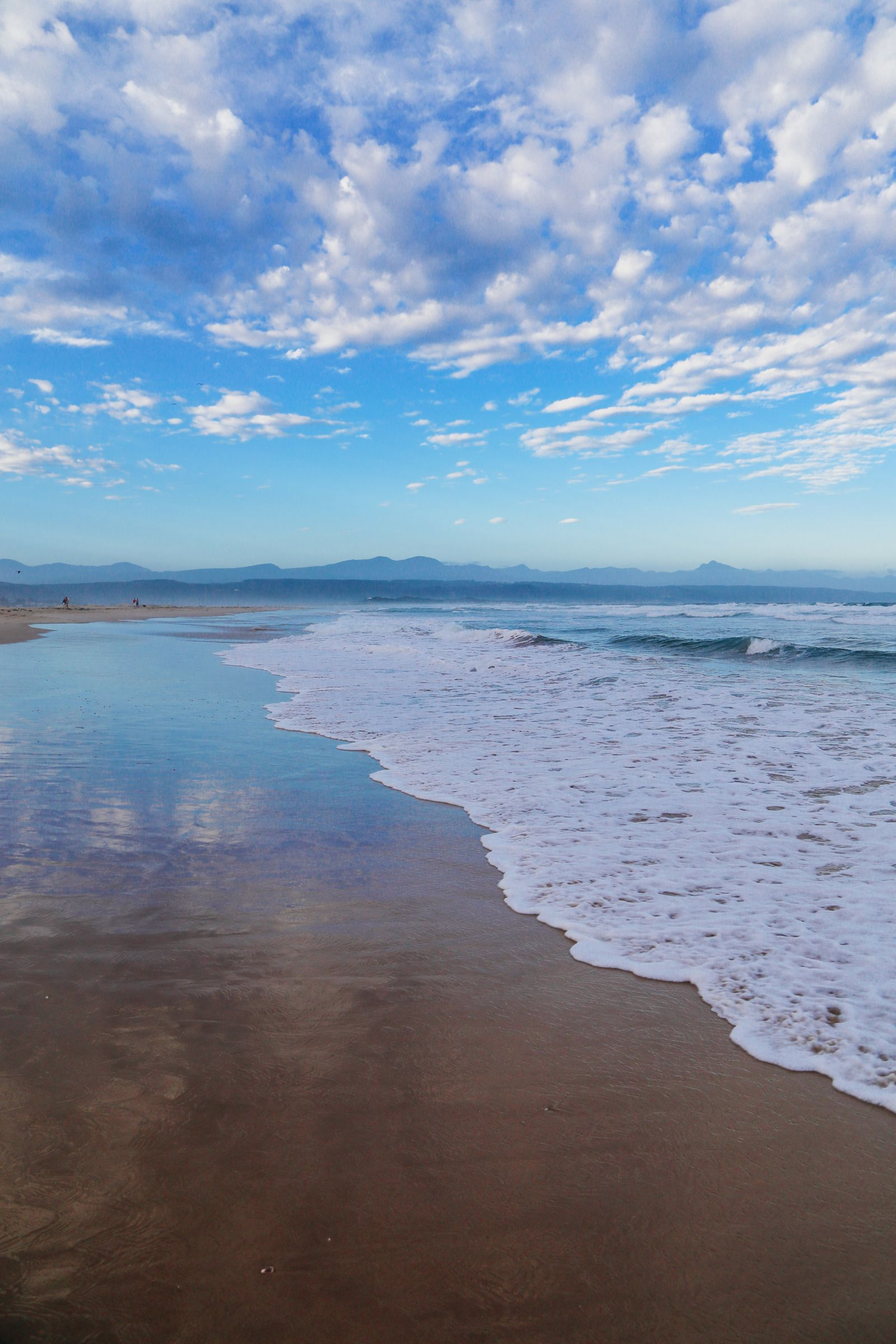 Ravines, Vineyards, Elephant Walking And The Most Spectacular Beach In South Africa's Eastern Cape (49)