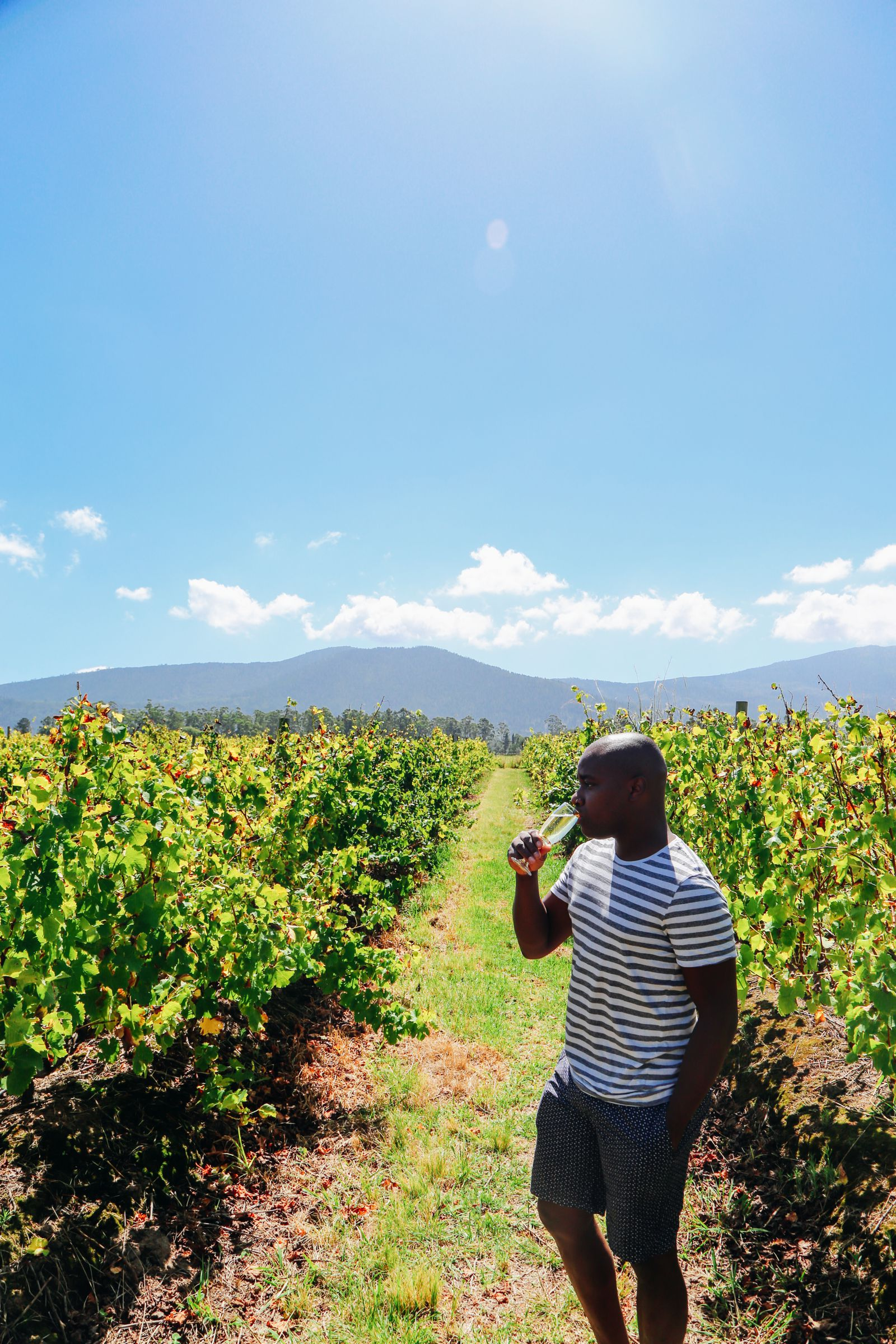 Eastern Cape Adventures In South Africa: Wines, 1,000 Year Old Trees And The Tallest Bungee In The World! (28)