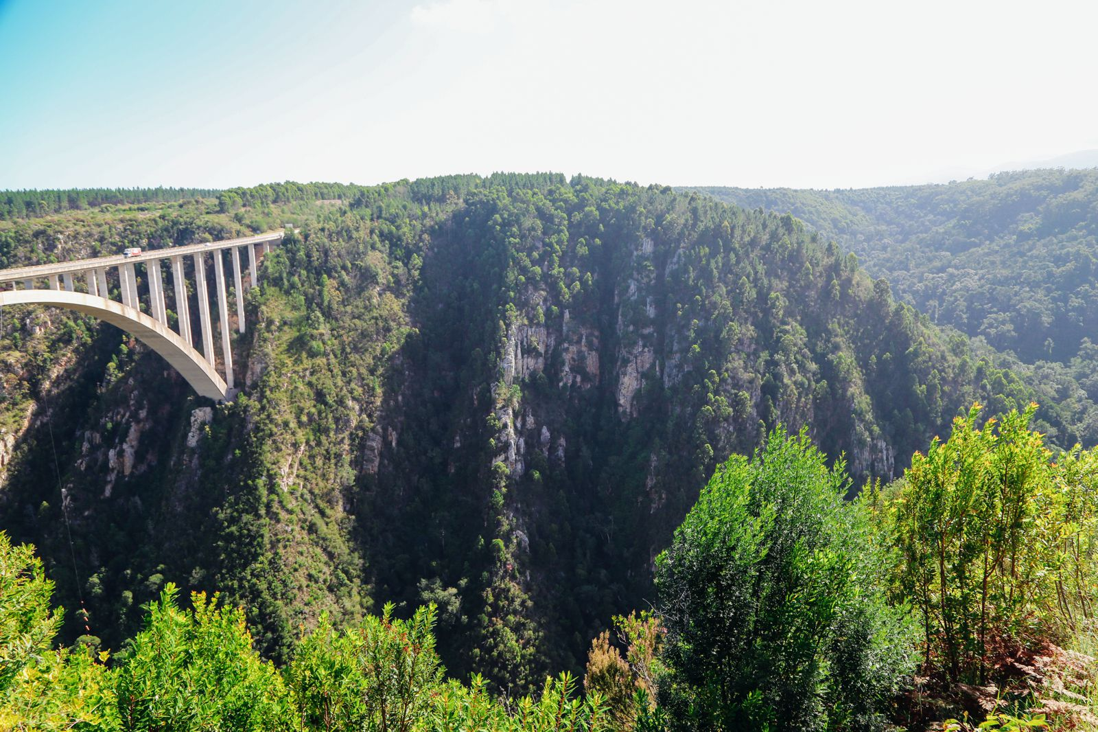 Eastern Cape Adventures In South Africa: Wines, 1,000 Year Old Trees And The Tallest Bungee In The World! (42)