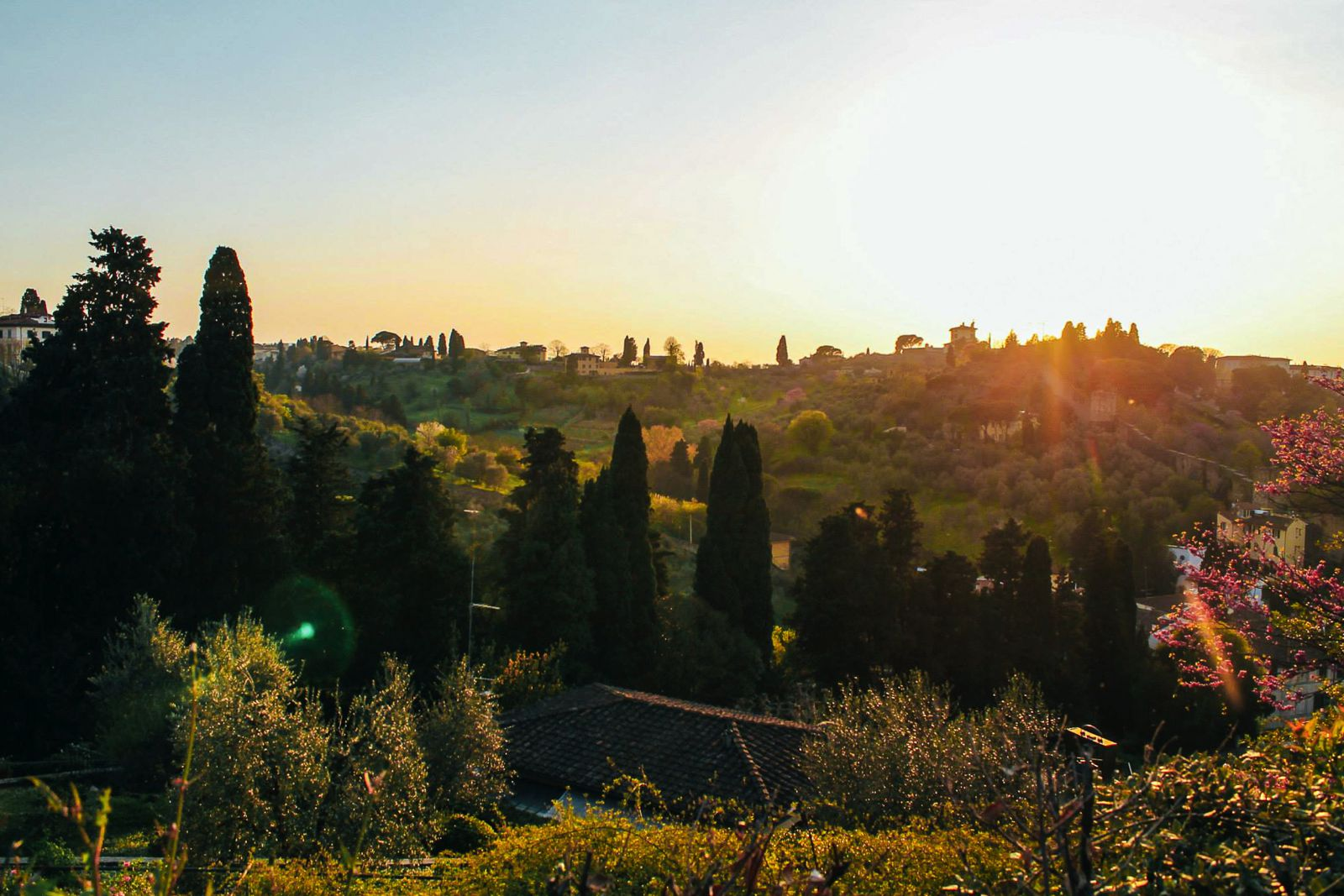 Top Experiences For A First Time Visit To Florence (24)