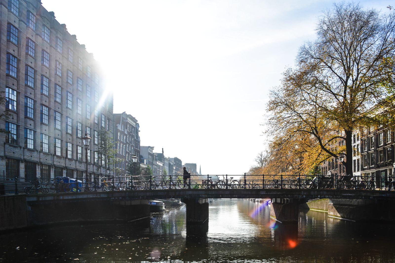 Unique Things To Do Visiting Amsterdam (11)