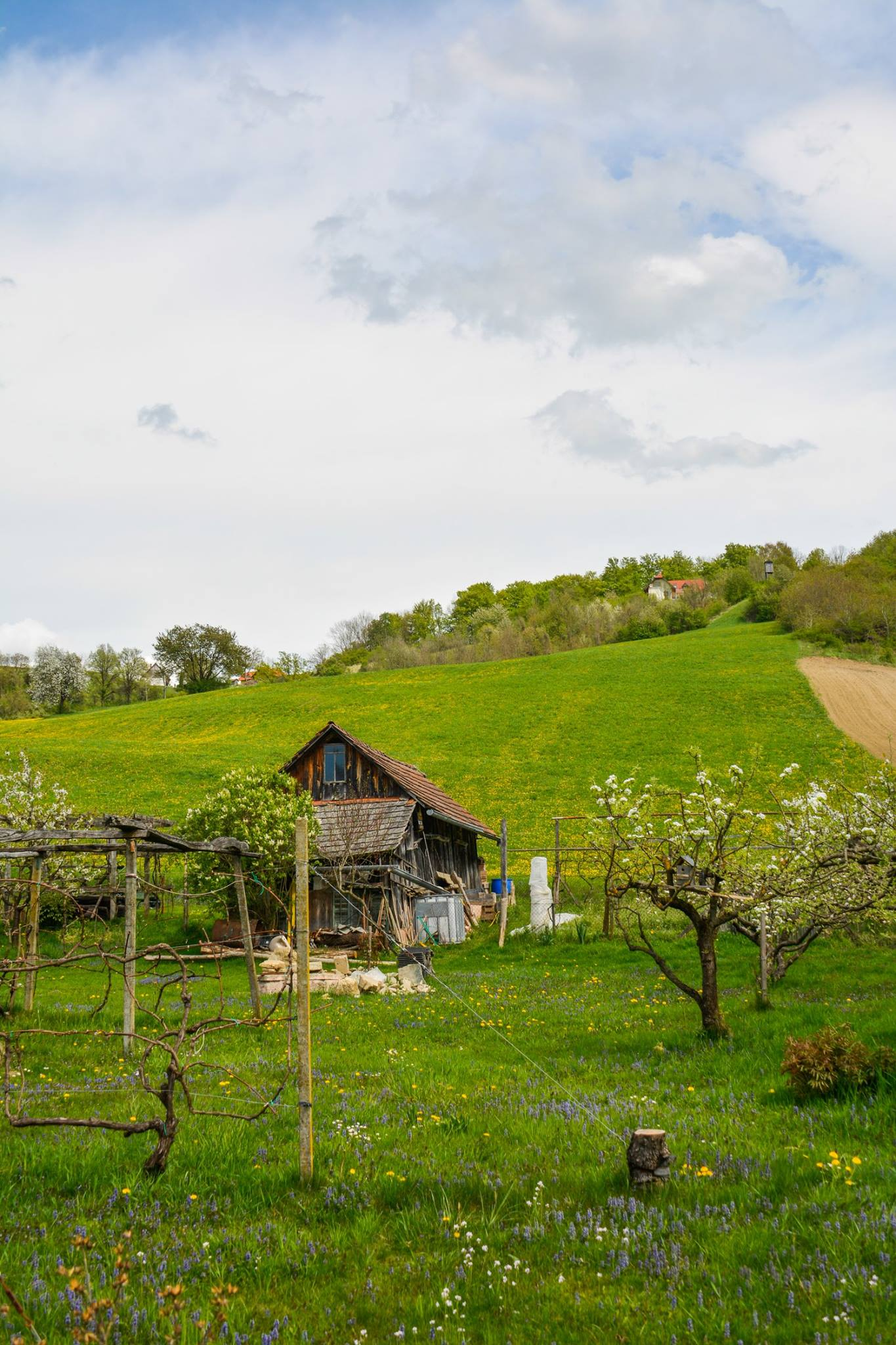 What Is Slovenia Like To Visit In Europe (38)